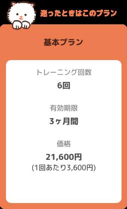 【基本プラン】トレーニング回数:6回 有効期限:3ヶ月 価格:21600円(1回あたり3600円)