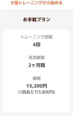 【お手軽プラン】トレーニング回数:4回 有効期限:2ヶ月 価格:15200円(1回あたり3800円)