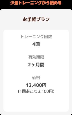 【お手軽プラン】トレーニング回数:4回 有効期限:2ヶ月 価格:12400円(1回あたり2900円)